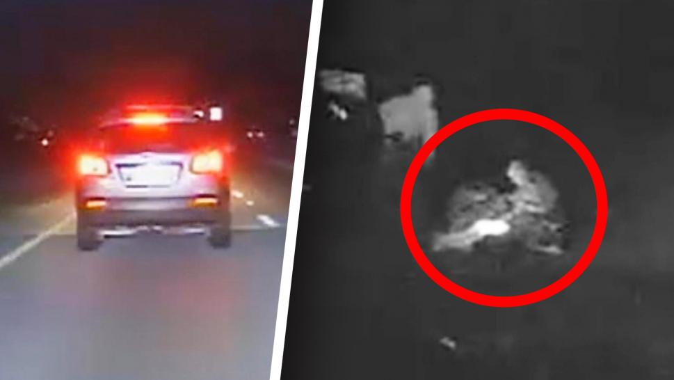 Woman Gives Birth on Roadway After Being Pulled Over by Cop